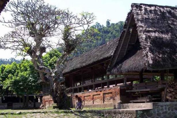 Desa Tengenan
