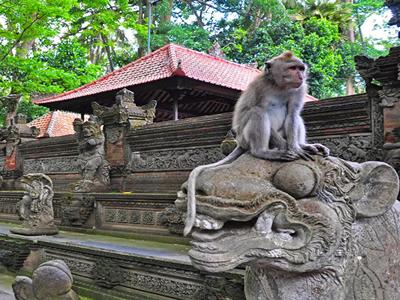 wisata ubud monkey forest